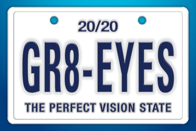 """Picture of Gr8 Eyes License Plate (6"""" X 4"""")"""